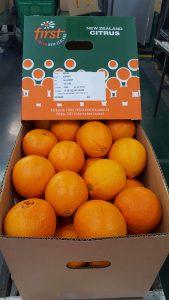 Box of juicy First Fresh NZ oranges