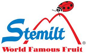 Stemlit logo