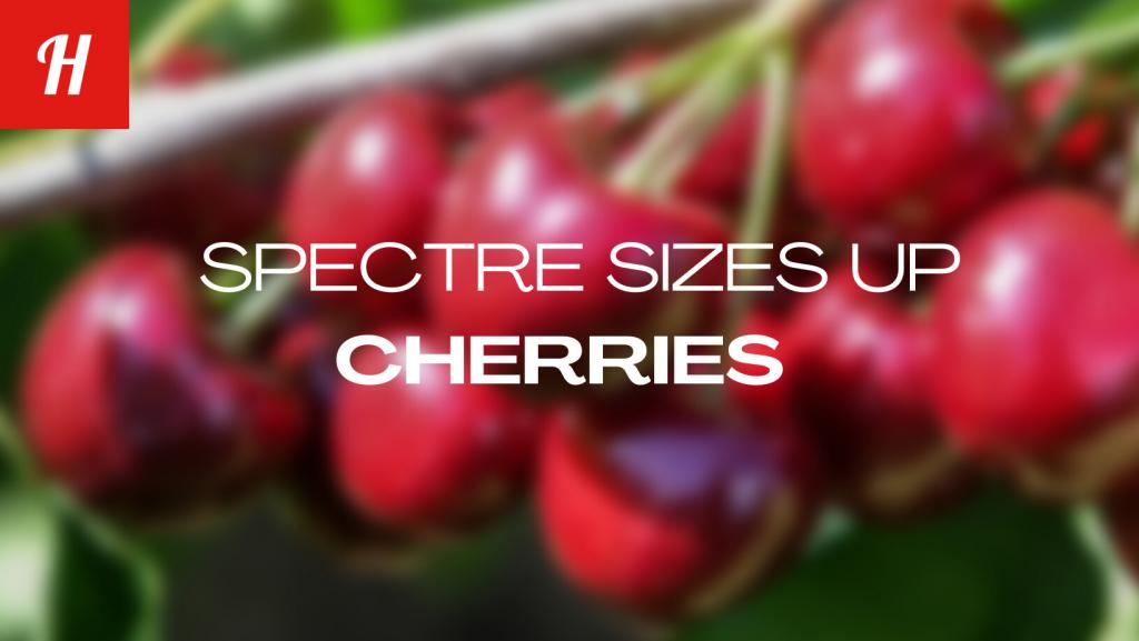 Spectre for Cherries